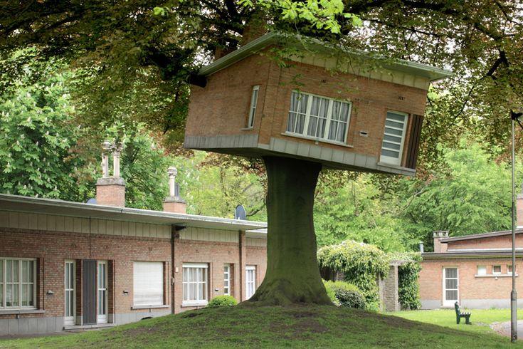 senior center turned treehouse by benjamin verdonck