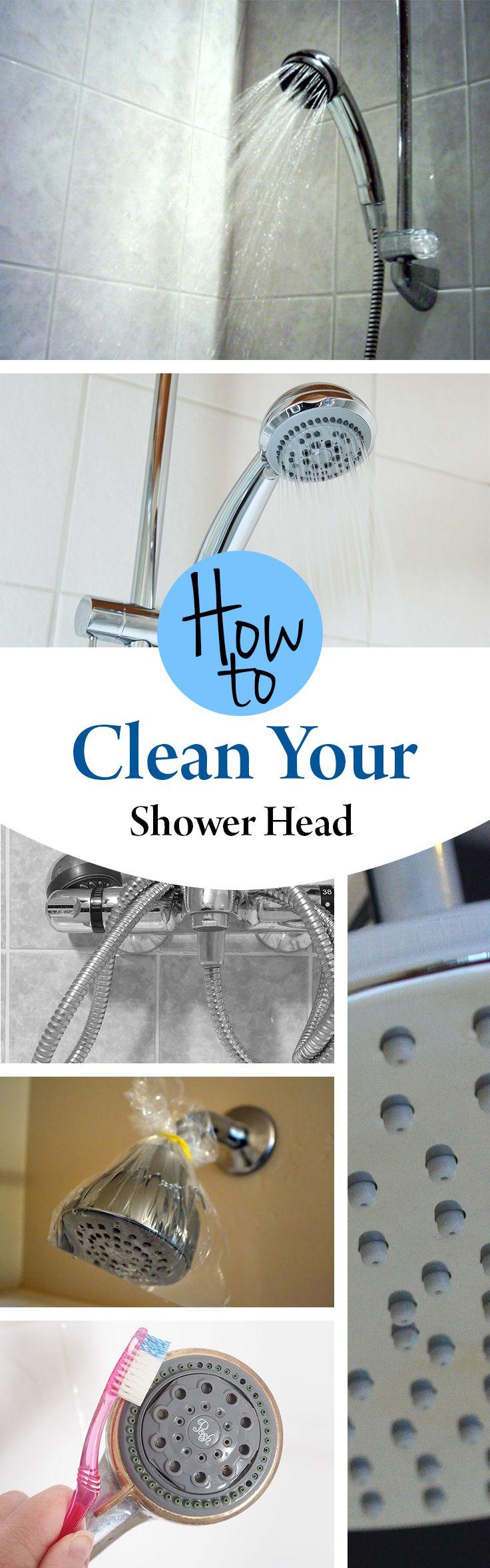 Best 25 Shower Head Cleaning Ideas On Pinterest Shower Cleaning Shower Cleaner And Cleaning