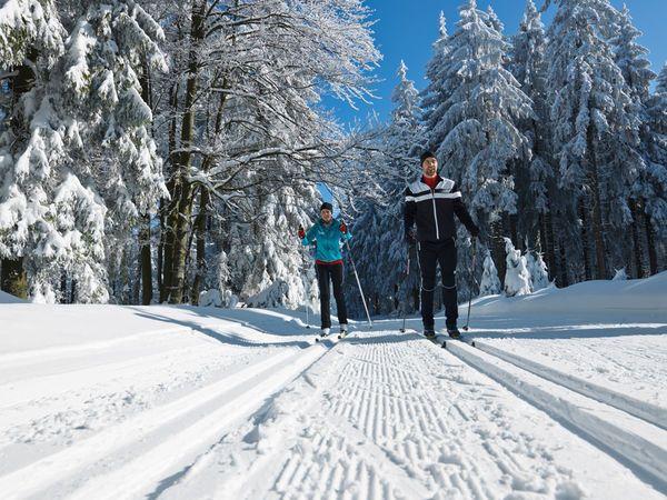 Ob Langlauf, alpines Skivergnügen, Winterwandern oder eine der zahlreichen anderen Sportarten - hier kommen Freunde des Wintersports in jedem Fall auf ihre K...