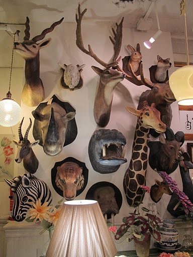 Papier mache taxidermy. No animals were harmed in the making of these fabulous wall decorations.