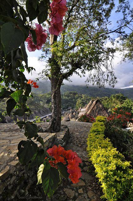 Bena Village In Flores Island, Indonesia (by lasse christensen).