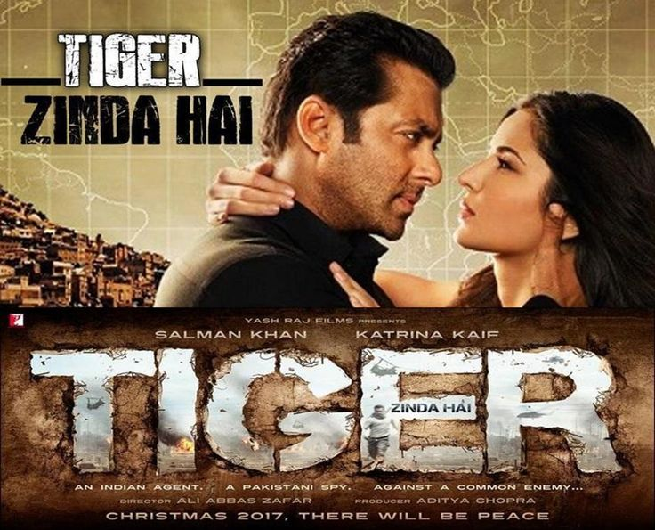 Salman Khan Katrina's Tiger Zinda Hai official trailer first look will release in june 2017.