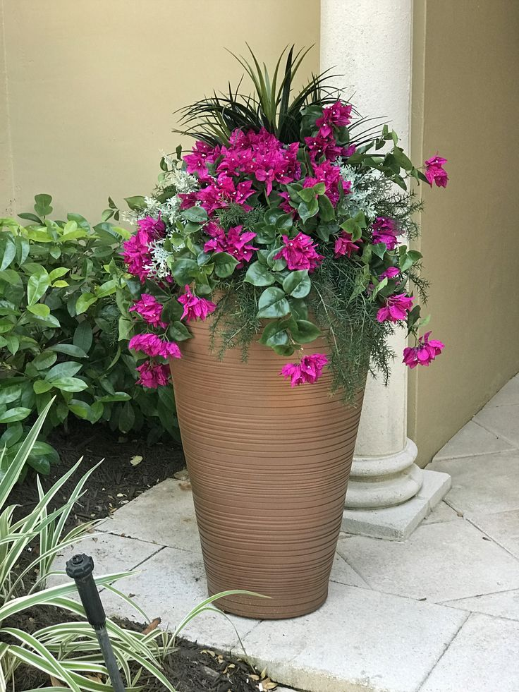 how to move large potted plants