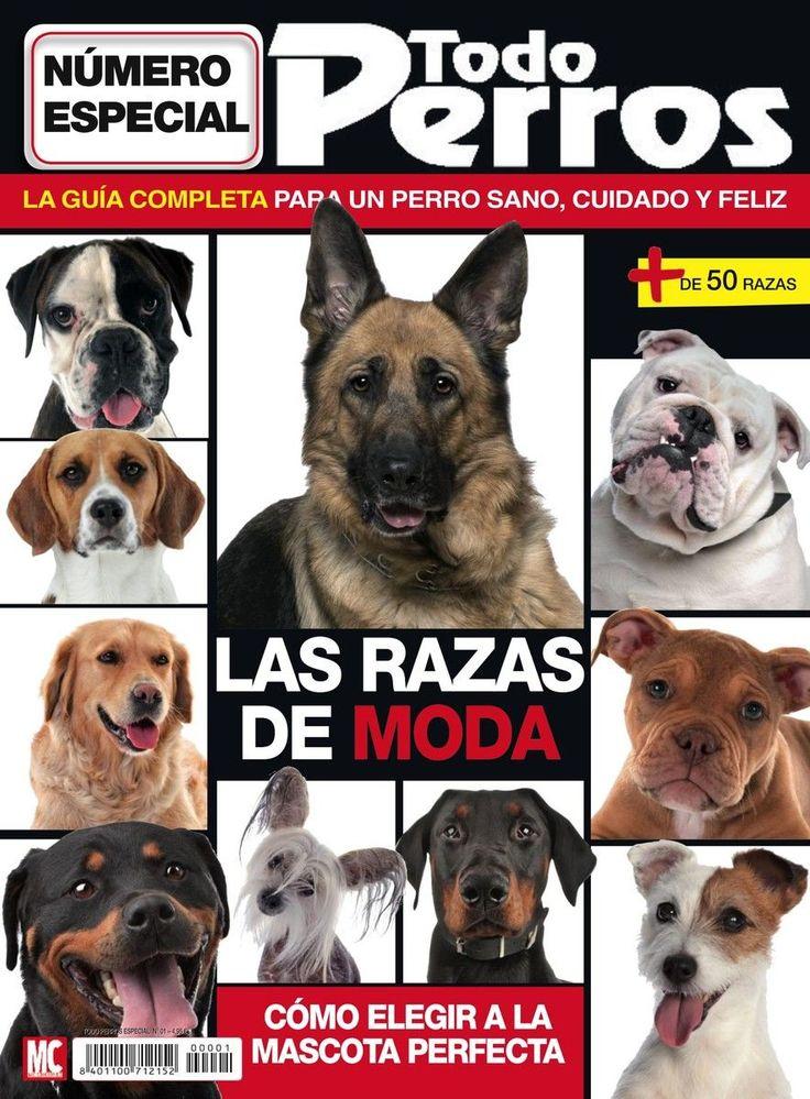 31 mejores im genes de revista todo perros en pinterest - Todo para nuestras mascotas ...