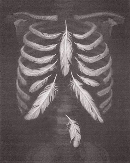 Breathe Easily - Feather-Light Ribs drawing {Attribution anyone?}