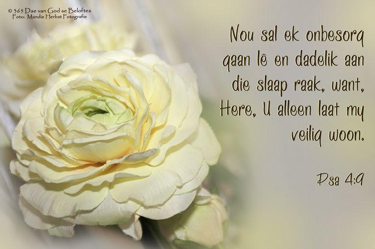 Dag 53 Bybelvers: Psalm 4:9 Nou sal ek onbesorg gaan lê en dadelik aan die slaap raak, want, Here, U alleen laat my veilig woon.