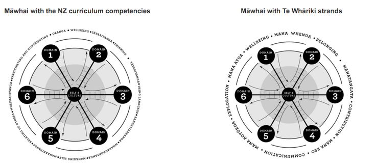 "Māwhai - the 'webbing' of an identity with the 'networked' support of the interprofessional community. The ""web"" part of Māwhai""  relates to my PERSONAL LEARNING as I web and connect my learning for each of the core domains relating to my practice. This webs my professional Identity by demonstrating my learning against the core competencies of each domain. The ""net"" part of Māwhai  in this course is developing PROFESSIONAL LEARNING NETWORKS and learning through connecting with others."