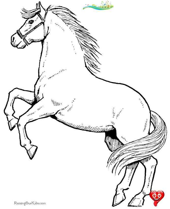 Horse Coloring Pages Horse Coloring Pages Free Printable Coloring Pages For Kids Horse Coloring Pages Br Horses Are One I 2020 Malarbocker Malarbok Digi Stamplar