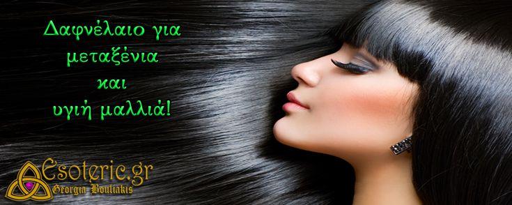 Δαφνέλαιο+για+μεταξένια+και+υγιή+μαλλιά!