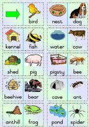 English teaching worksheets: Animal homes