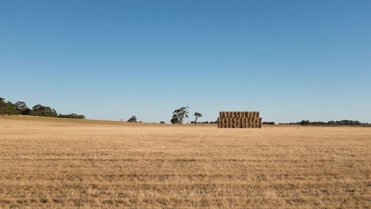 Square hay bales along the road from Ballarat to Mt Abrupt in the southern Grampian Mountains over the summer.