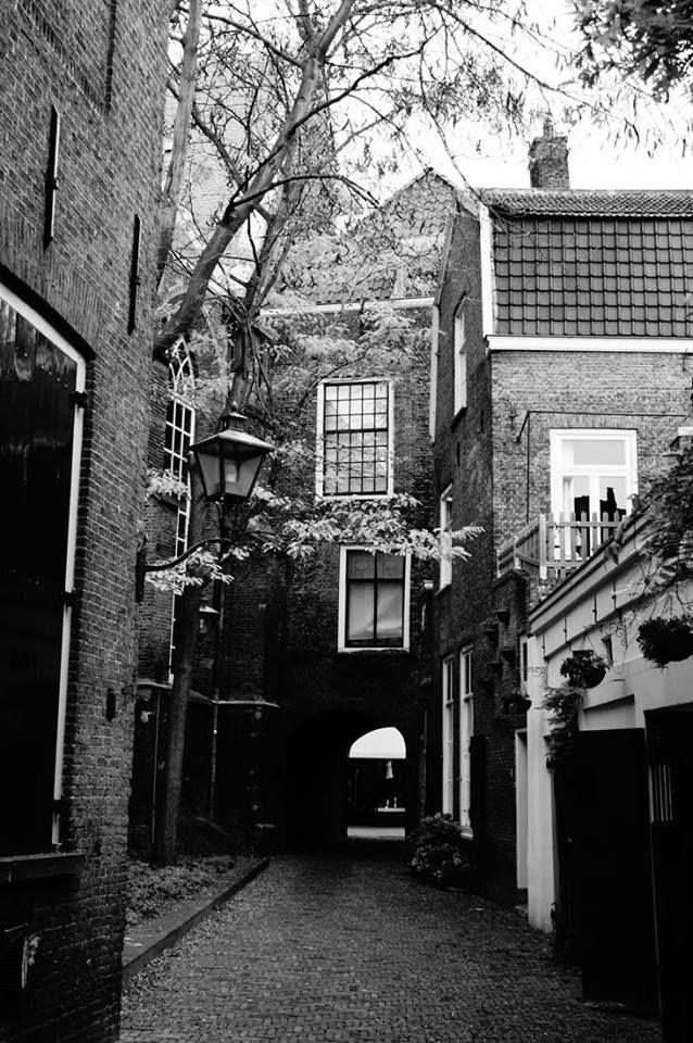 Verborgen plekjes in de binnenstad. Mooie foto van Nina den Bouw, Vanaf Hofpoort Voorstraat naar het Hof van Nederland.
