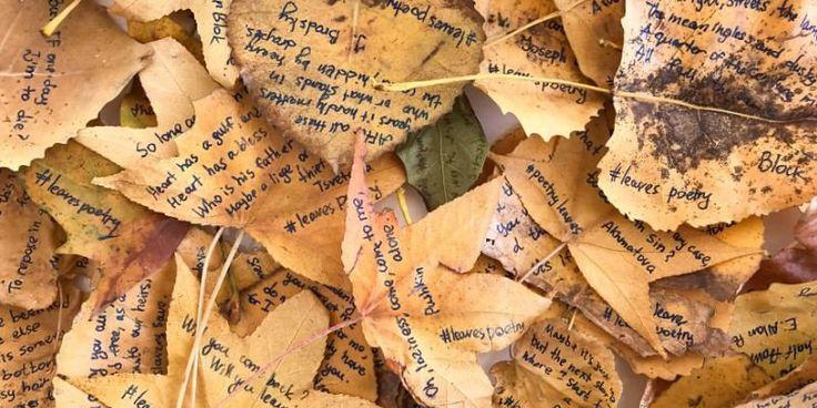 Poesie sulle foglie dei parchi di New York