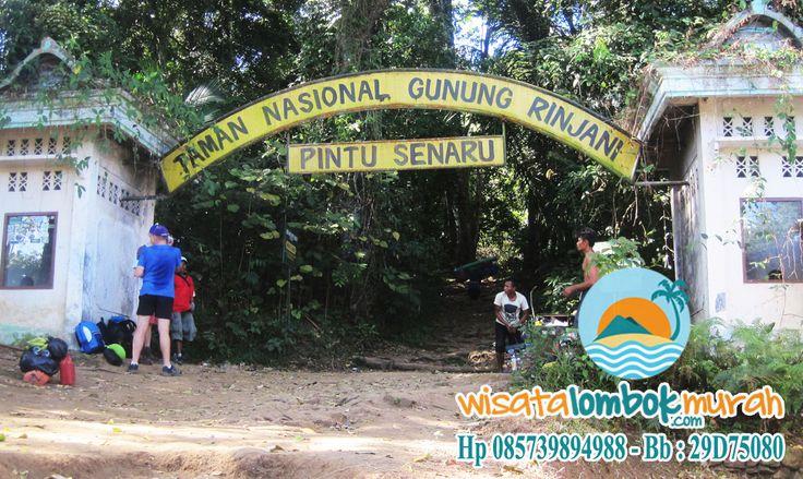 Anda Suka Wisata Alam? Wisata Alam Gunung Rinjani Lombok memiliki panorama alam yang sangat menakjubkan, info lebih lengkap kunjungi http://wisatalombokmurah.com/objek-wisata-alam-gunung-rinjani-lombok-yang-menantang/   #gunungrinjani #gunungrinjanilombok #rinjanilombok #rinjani #lombok