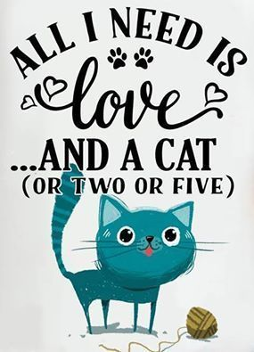 Quotes about Cats - All I Need is Love... and a Cat (or Two or Five) http://www.traveling-cats.com