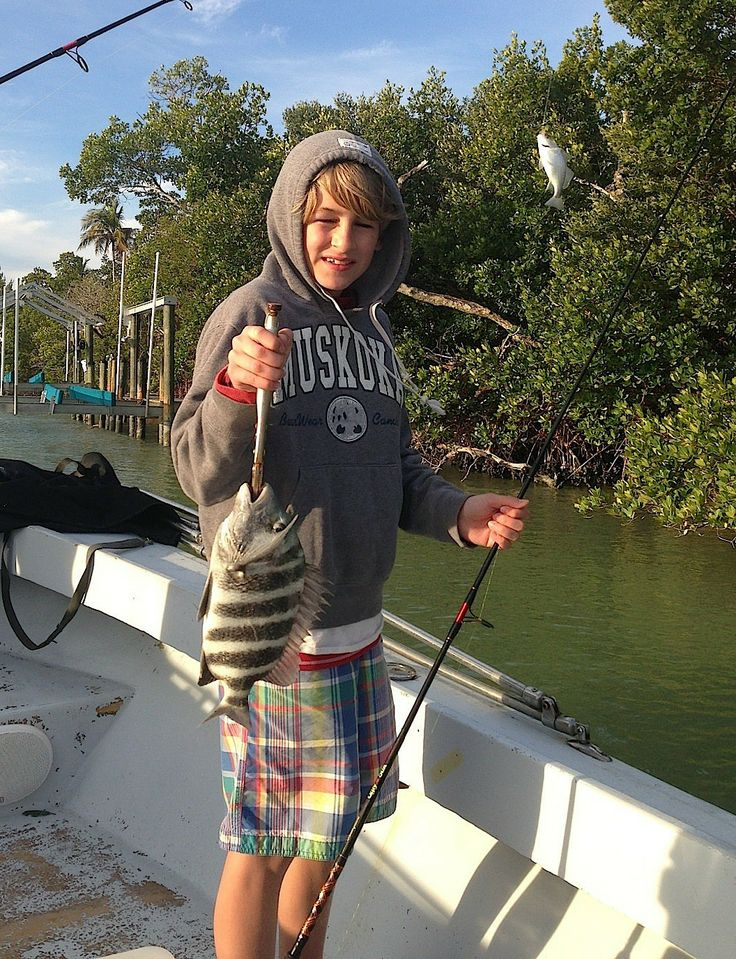17 best images about naples fishing marco island fishing for Fish naples fl