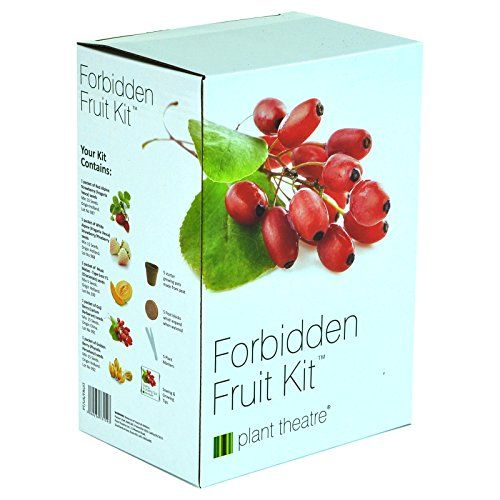 A fruity selection of 5 distinctive varieties to grow from seed that makes a fabulous #gift. The kit contains the following varieties, 1 packet of Alpine White S...