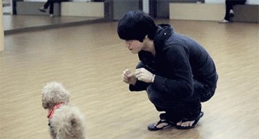 Jaejoong... I know the puppy is cute, but...