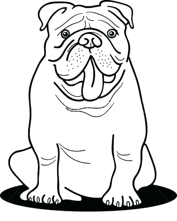 Bulldog Colouring Pages : bulldog, colouring, pages, Bulldog, Coloring, Pages, Page,, Puppy, Pages,, Animal