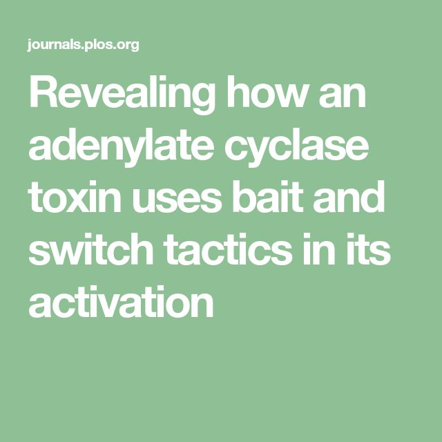 Revealing how an adenylate cyclase toxin uses bait and switch tactics in its activation