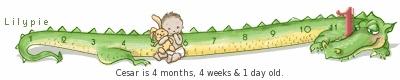 5 meses e 2 semanas.... O ANJO QUE DEUS COLOCOU EM MINHA VIDA.