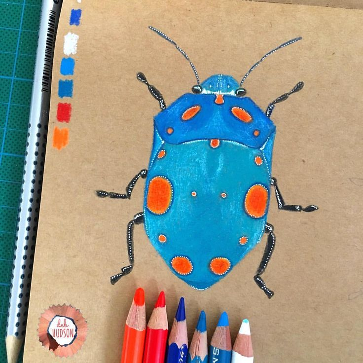"377 Likes, 3 Comments - DEB HUDSON (@debi_hudson) on Instagram: ""Day 70 /100 of #the100dayproject stink bug #100daysofcolouredpencilbydeb"""