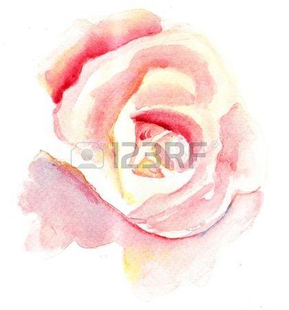 Aquarel illustratie van gestileerde roos