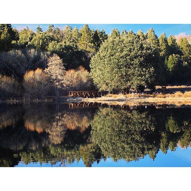 Caliparks : Palomar Mountain State Park