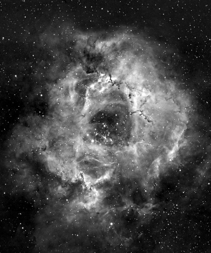 Rosette Nebula Mosaic in H-Alpha Light