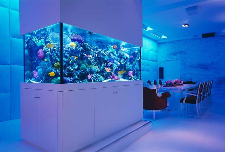 We have a range of cabinet style aquariums including bowed and corner.