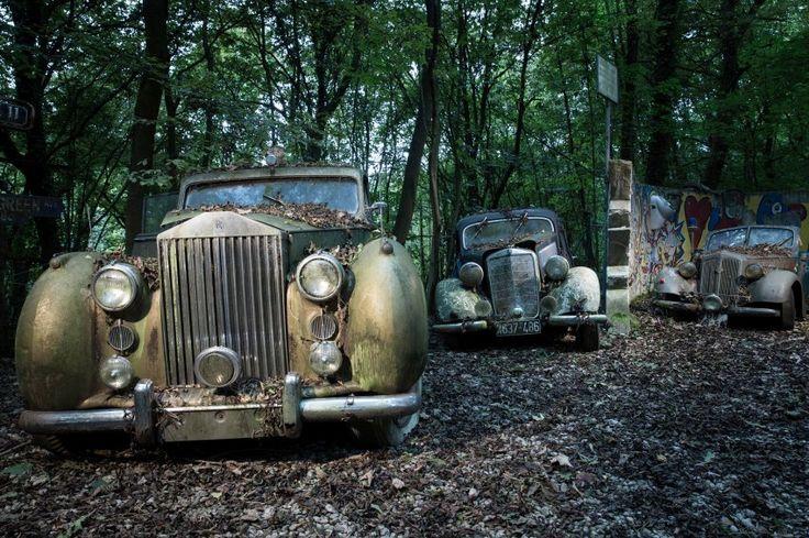 Michael Fröhlich schenkte sich zu seinem 50. Geburtstag 50 Oldtimer, alle mit Baujahr 1950. Das war im Jahr 2000. Heute verrotten die Autos in einem Waldstück - so wie ihr Besitzer es sich gewünscht hat.