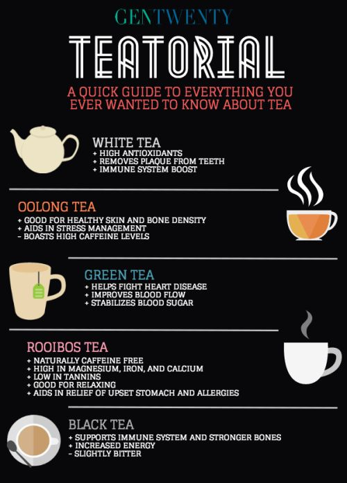 The TEATORIAL: Everything You Ever Wanted to Know About Tea