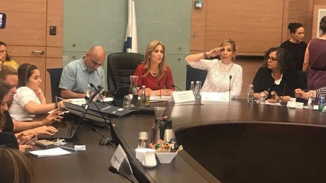 Female MKs to take anti-prostitution fight to Knesset next week. Justice Ministry committee wraps up year-long evaluation on punishing the clients of prostitutes, to present findings to Ayelet Shaked next week; other lawmakers not waiting