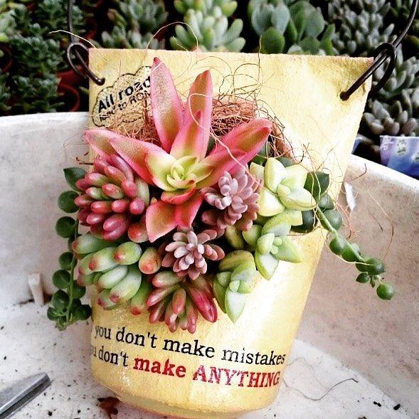 もはや懐かしい#爆弾缶bag 次はこの形もっと作ろうかなーと妄想中…空き缶あったかな(._.?) ☆。・:*:・゚'★,。・:*:・'。・:*:・゚'★,。・:*:・゚'☆ #多肉植物 #多肉植物寄せ植え #多肉のある暮らし #megs_item #多肉女子 #リメ缶 #リメイク #ギャザリング #斑入り火祭り #爆弾缶