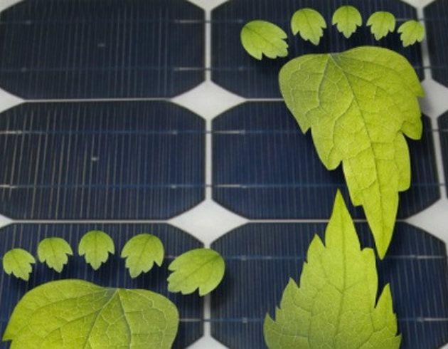 #Pannelli #solari e #fotosintesi clorofilliana: un binomio impossibile? Assolutamente no.  La nuova frontiera del #fotovoltaico è costituita dalle celle a base della sostanza organica presente nei mirtilli! Un grande passo avanti in chiave di #sostenibilità #ambientale.  #energy #energia #sun #future