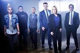 CSI Cyber é a última entrega da saga CSI. Nesta traballan para resolver homicidios na Deep Web, hackeos, ciber-roubos ou infraccións de índole sexual e chantaxes. A serie pódese ver en FDF (Mediaset).