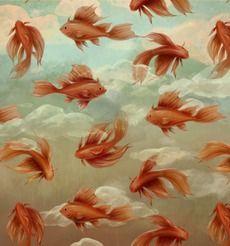 Красные рыбки - киты - Коллекции