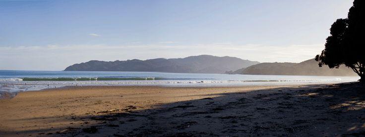 Coopers Beach (Doubtless Bay NZ). copyright © Debra Stratford