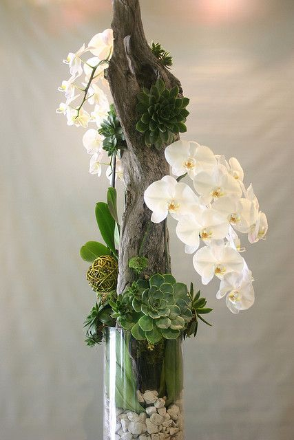 Orchid with succulents and driftwood 039 by Garden Party Flowers, via Flickr