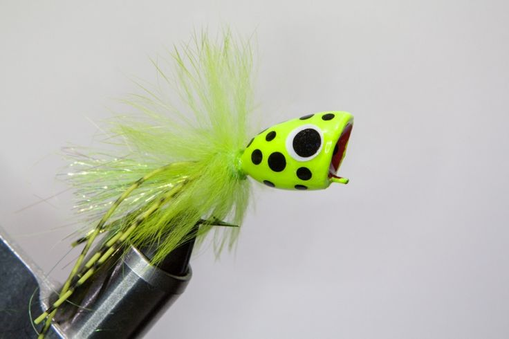 Chartreuse Spotted Popper