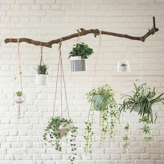 home decor exposed white brick wall indoor plants hanging pots branch bohemian style