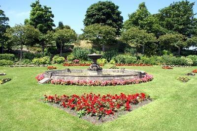 ¿Es el mantillo de cedro seguro para el jardín? | eHow en Español