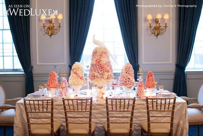 Marie Antoinette photo shoot #uoft #FacultyClub #weddings