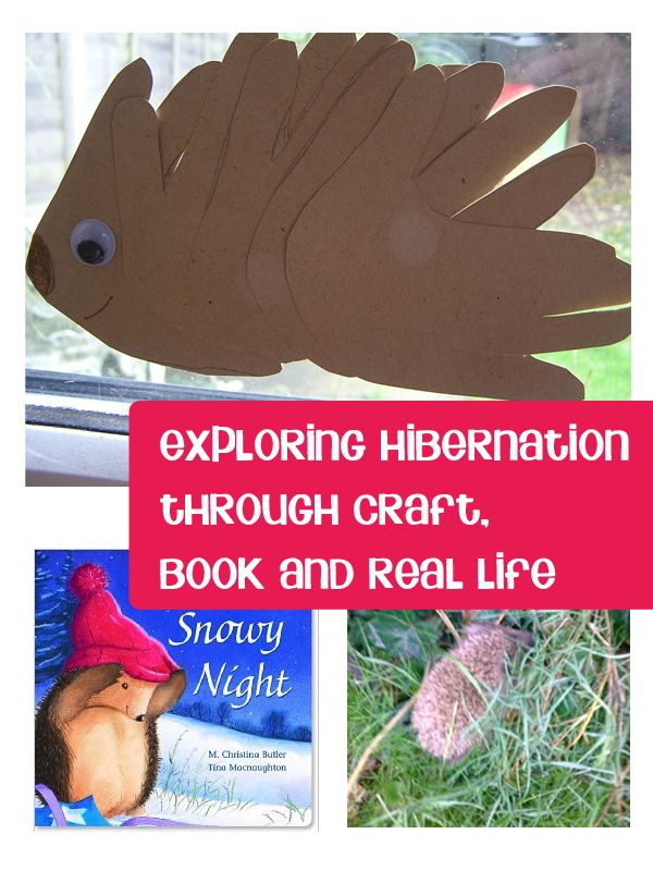 Take a impromtu moment and make hands on learning experiences from that moment. Here the sighting of a hedgehog off to find his winter home set us crafting and reading about Hibernation and Winter Animals - how do you take a moment and expand on it with your children?