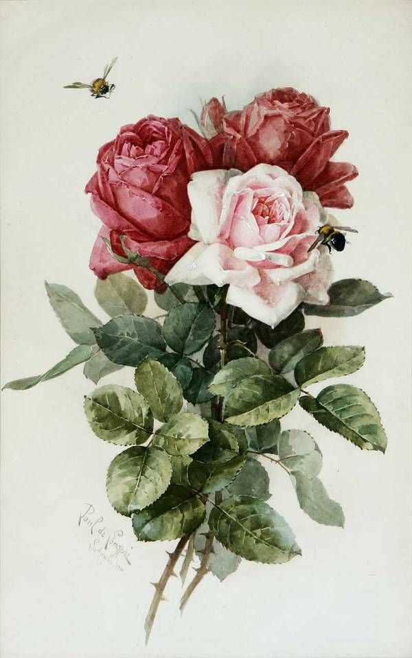 art-and-things-of-beauty:    Paul de Longpré (1855-1911) - Roses and bumblebee, watercolour, 47 x 30,5 cm.