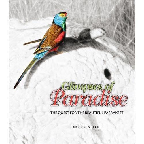 gilbert paradise parrot - Google Search