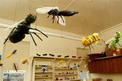 Directions for making paper mache bugs with early elem. children.  Fun!