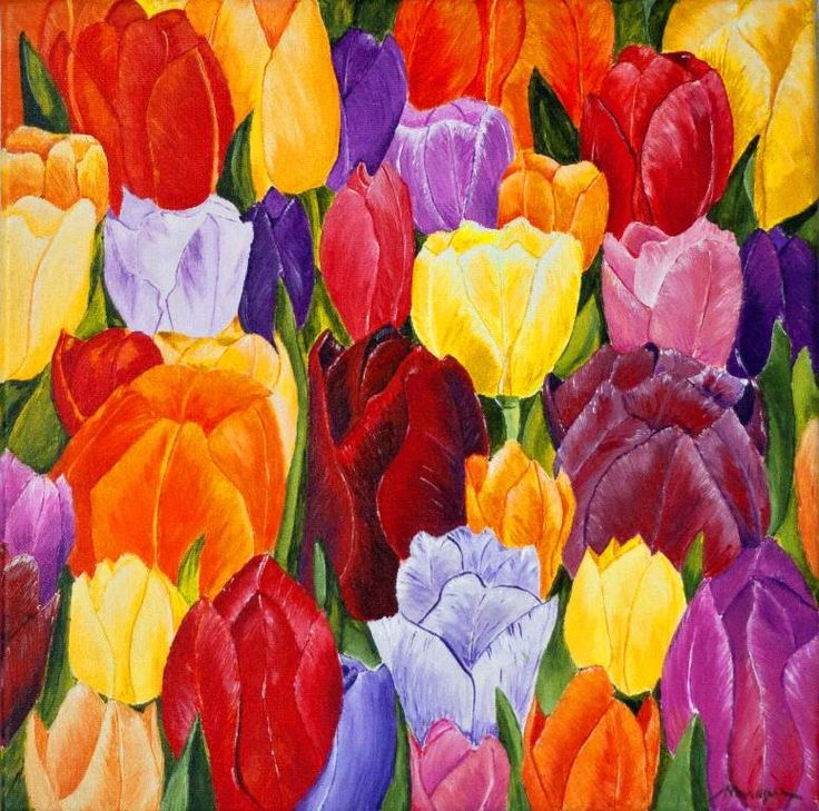 Colourd tulips