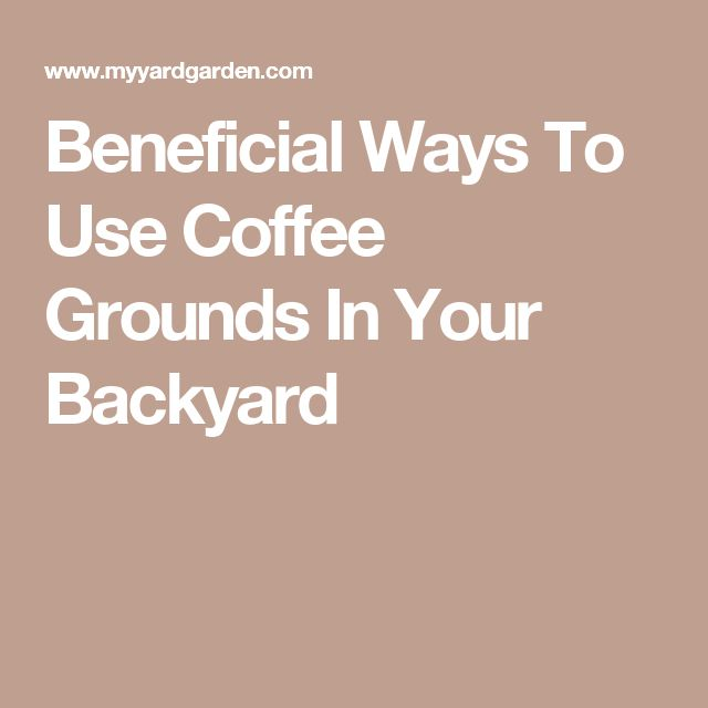 1000 Ideas About Used Coffee Grounds On Pinterest