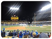 Field Boxes Dodger Tickets